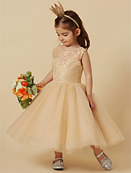 cheap -A-Line Knee Length Flower Girl Dress - Lace / Tulle Sleeveless Scoop Neck with Lace by LAN TING BRIDE®