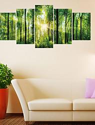 abordables -Autocollants muraux décoratifs - Autocollants avion Paysage Salle de séjour / Chambre à coucher / Salle de bain