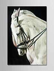 abordables -Peinture à l'huile Hang-peint Peint à la main - Bande dessinée Moderne Toile