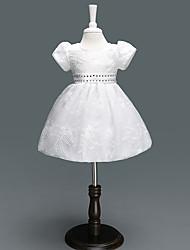 Недорогие -малыш Девочки Цветок солнца С принтом / Жаккард С короткими рукавами Платье
