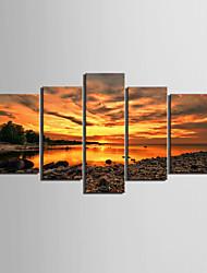 Недорогие -С картинкой Роликовые холсты / Отпечатки на холсте - Пляж / Пейзаж Modern