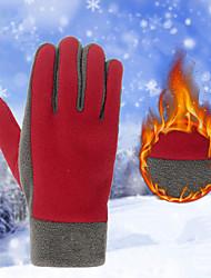 Недорогие -Зимние Лыжные перчатки Муж. Жен. Снежные виды спорта Полный палец Зима С защитой от ветра Дышащий Сохраняет тепло Трикотаж Катание на лыжах Снежные виды спорта Сноубординг