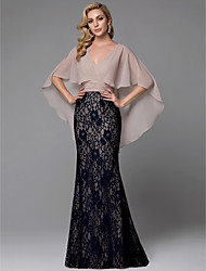cheap -Sheath / Column V Neck Floor Length Chiffon / Lace Color Block / Vintage Inspired Prom / Formal Evening Dress with Lace Insert by TS Couture®