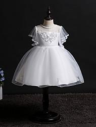 Χαμηλού Κόστους -Παιδιά / Νήπιο Κοριτσίστικα Ενεργό / Γλυκός Πάρτι Μονόχρωμο Lace Trim Κοντομάνικο Ως το Γόνατο Φόρεμα Βυσσινί