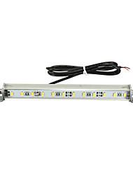 Недорогие -автомобиль грузовик ксенон белый 12 smd светодиодный свет номерного знака 12 В постоянного тока винт на болтах