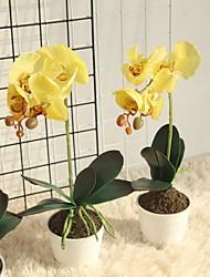 billiga -Konstgjorda blommor 1 Gren Klassisk Europeisk Eviga Blommor Phalaenopsis Bordsblomma
