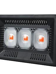 Недорогие -1 комплект 100 W 8000 lm 3 Светодиодные бусины Полного спектра Простая установка Для парниковых гидропоники Растущие светильники Фиолетовый 220-240 V 110-120 V Деловой