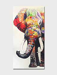 Недорогие -ручная роспись холст масляной живописи абстрактный слон ножом украшения дома с рамкой картины готовы повесить