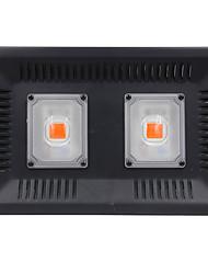 levne -1ks 100 W 4000-4500 lm 2 LED korálky Plnospektrální Rostoucí svítidlo Červená RGB + bílá 110 V
