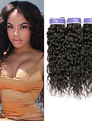 cheap -3 Bundles Malaysian Hair Water Wave Virgin Human Hair 100% Remy Hair Weave Bundles Headpiece Natural Color Hair Weaves / Hair Bulk Bundle Hair 8-28 inch Natural Human Hair Weaves Odor Free Silky