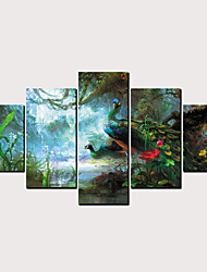 Недорогие -С картинкой Роликовые холсты - Животные Модерн Классика Modern 5 панелей