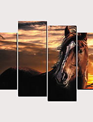 cheap -Print Rolled Canvas Prints - Abstract Animals Classic Modern Four Panels