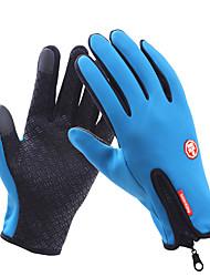 Недорогие -сенсорный экран полный палец зимний спорт windstopper лыжные перчатки теплые перчатки для мотоциклетных перчаток