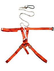abordables -Bozales Belay y Rappel Dispositivos Protección Escalada cinturón de seguridad Fibra resistente al calor El material especial Escalada Ejercicio al Aire Libre Deportes Múltiples 东安 Algunas + gris