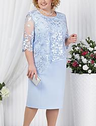 Недорогие -Жен. Большие размеры Для мамы Оболочка Платье - Однотонный, Кружева До колена
