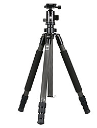 Недорогие -SIRUI SIRUI углеродного волокна штатив r2204 однооборотный штатив камеры фотографии портативные платформы эшафот
