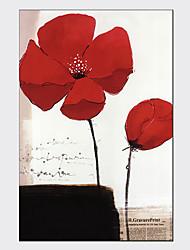 Pinturas Florais/Botânicas