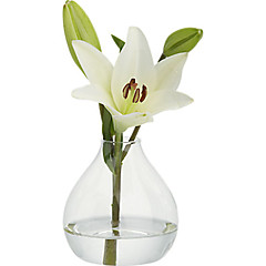 cheap -Table Centerpieces Simple Clear Glass Vase  Table Deocrations