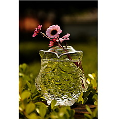 cheap -Table Centerpieces Owl Shaped Glass Vase  Table Deocrations