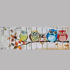 állat olajfestmény kézzel festett fal művészet más művészek kézzel festett olaj paintingp338-1 kész lógni