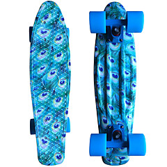 Peacock Blue Standard Skateboards PP (Polypropylene) Animal Print