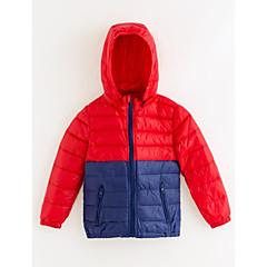 baratos Roupas de Meninos-Para Meninos Blusa Estampa Colorida Inverno Poliéster Azul Vermelho Roxo