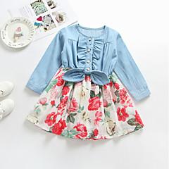 Недорогие Платья-Дети Девочки Классический Повседневные Однотонный Длинный рукав Платье Цвет радуги