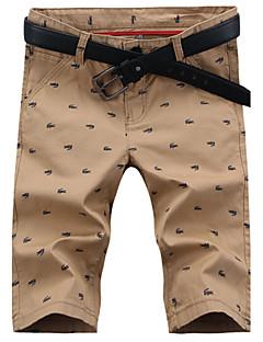 Menn Fritid Trykk Shorts,Bomullsblanding Flerfarget