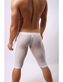 billige Løbetøj-Herre Snørelukning / Gennemsigtig Løbeshorts - Hvid, Sort Sport Net Shorts / Bukser Fitness, Træningscenter, Træning Sportstøj Åndbart, Hurtigtørrende, Fugtpermeabilitet Elastisk