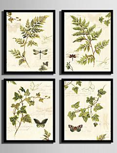 Çiçek/Botanik Çerçeveli Tuval / Çerçeve Seti Duvar Sanatı,PVC Malzeme Siyah Keçesiz Frame ile For Ev dekorasyonu çerçeve Sanat