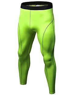 billiga Träning-, jogging- och yogakläder-Herr Tights för jogging / Gymleggings - Röd, Blå, Frukt grön sporter Cykling Tights Fitness, Gym, Träna Sportkläder Lättvikt, Andningsfunktion, Fitness, Löpning & Yoga Hög Elasisitet / Snabb tork