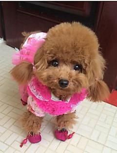 billiga Hundkläder-Katt Hund Skor och stövlar Platta Håller värmen Vattentät Enfärgad Svart Fuchsia Blå För husdjur