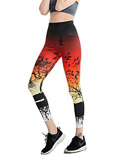 baratos Roupas de Dança Latina-Dança Latina Calça Legging Mulheres Treino / Espetáculo Elástico / Charmeuse Estampa / Elástico Alto Calças
