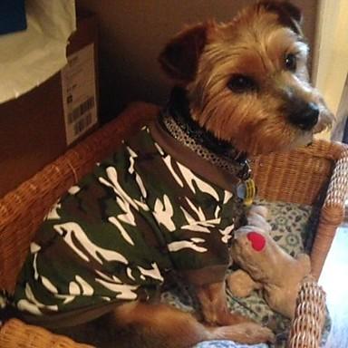 Kat Hond T-shirt Hondenkleding Cosplay Bruiloft camouflage Groen Roze Kostuum Voor huisdieren
