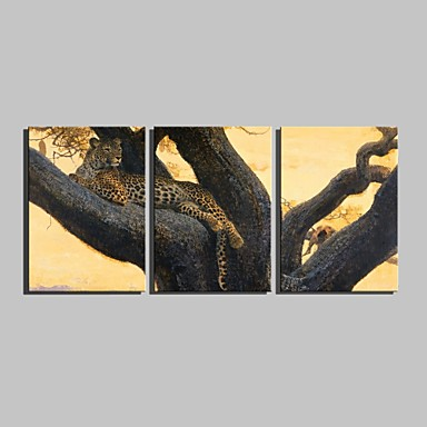 E-HOME® Stretched Canvas Art A Leopard On A Tree Decoration Painting  Set of 3