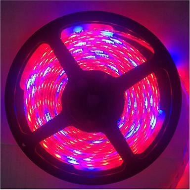 70W 1300lm Ingen Voksende lysarmatur 300 LED perler SMD 5050 Vanntett Dekorativ Blå Rød 12V