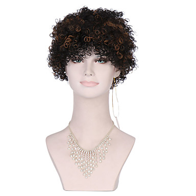eb48f987c kinky curly synthetic wigs for black brown women afro wig curly synthetic wigs  cheap hair for women sale Halloween