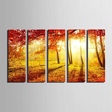 Aufgespannte Leinwandrucke Landschaft BotanischFünf Panele Vertikal Wand Dekoration For Haus Dekoration