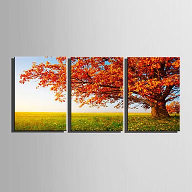 Canvas Set Landschap / Bloemenmotief/Botanisch Europese Stijl,Drie panelen Canvas Verticaal Print Art wall Decor For Huisdecoratie