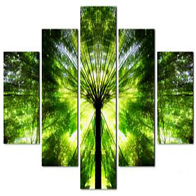 Kunstdrucke Blumenmuster/Botanisch Ländlich,Fünf Panele Horizontal Druck-Kunst Wand Dekoration For Haus Dekoration