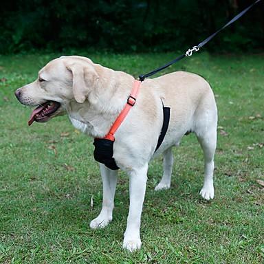 Gato Cachorro Arreios Trelas Reflector Portátil Respirável Dobrável Segurança Ajustável Sólido Náilon Preto Laranja