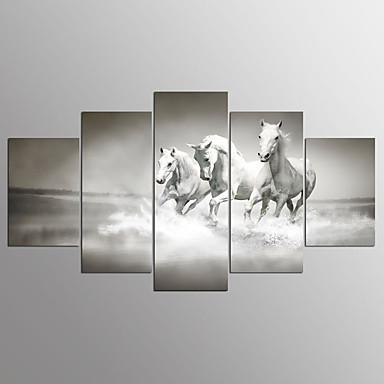 Stampe a tela cinque pannelli orizzontale stampa for Stampe da parete
