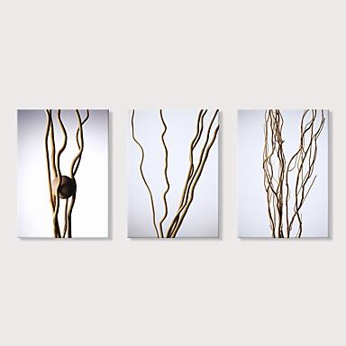 abordables Toiles-Imprimé Impression sur Toile - A fleurs / Botanique Moderne Trois Panneaux Art Prints