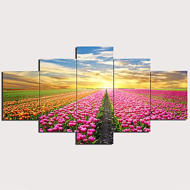 abordables Toiles-Imprimé Impression sur Toile - A fleurs / Botanique Traditionnel Moderne Cinq Panneaux Art Prints