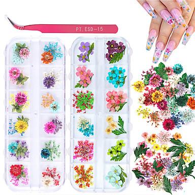 billige Strass og dekorasjoner-2 bokser tørkede blomster for neglekunst kissbuty 24 farger tørre blomster mini virkelige naturlige blomster negle kunst forsyninger (gypsophila blomster blader)