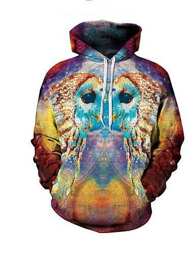 Men's Going out Hoodie 3D Print Hooded Micro-elastic Others Long Sleeve Spring Fall