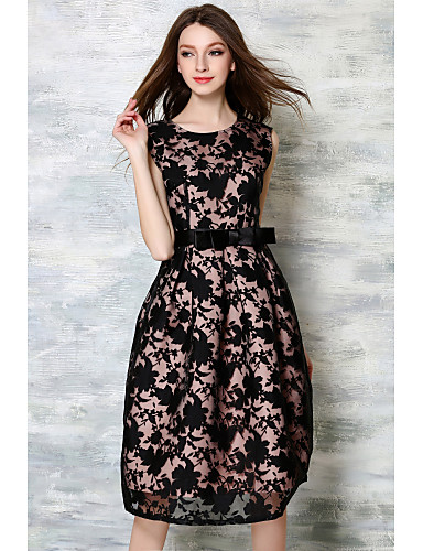 Women's Going out Vintage A Line Dress - Embroidered Lace / Spring / Fall