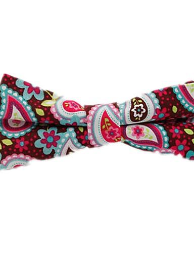 Unisex Floral / Bloc Culoare / Imprimeu Paisley Funde Petrecere / De Bază Papion Cravată