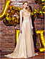 Χαμηλού Κόστους Βραδινά Φορέματα-Γραμμή Α Ουρά Σιφόν Επίσημο Βραδινό Φόρεμα με Λουλούδι(α) Πλαϊνό ντραπέ με TS Couture®