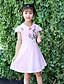 levne Dívčí šaty-Dívka je Květinový Léto Celoročně Jaro Šaty,Krátký rukáv